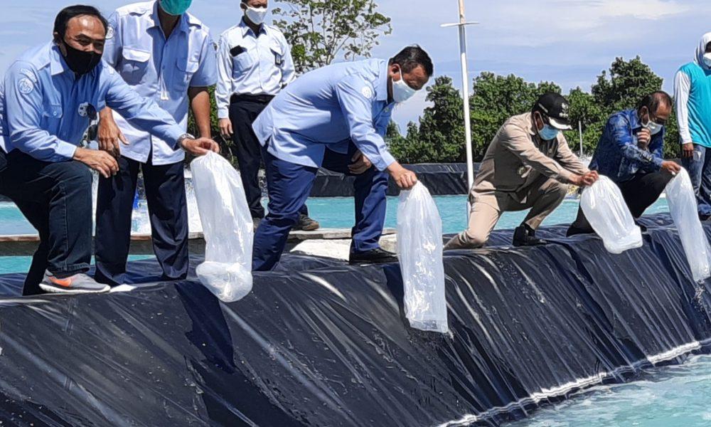 Menteri Edhy Siap Dukung Pengembangan Tambak di Pasangkayu